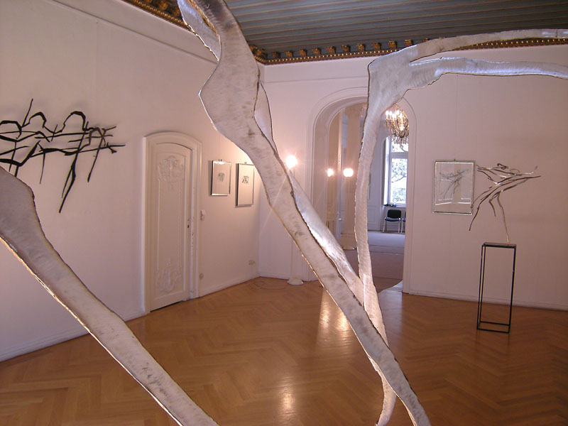 Exhibition: Bonn, Haus an der Redoute, 2008